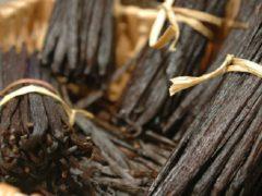Стручки ванили: их происхождения, какие обычно используют, чем можно заменить