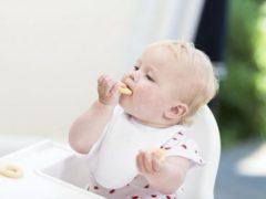 Печенье из детской молочной смеси — рецепты