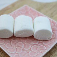 Маршмеллоу дома — рецепт воздушного десерта в какао, для костра и просто как сладость в домашних условиях
